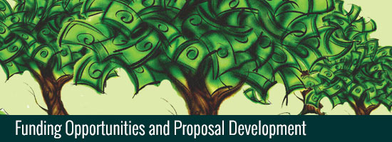 Funding Opportunities and Proposal Development